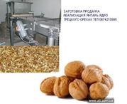 ядро грецкого горіха янтарь продаємо пропонуємо