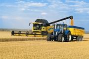 Услуги по уборке урожая зерновых Житомир,  аренда комбайнов на уборку