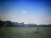 Продам зем. участок ОСГ 6, 5 га (75 км. от Киева). Брусилов