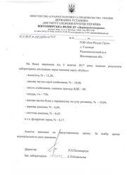 ПШЕНИЦА СОРТ КУБУС 2 РЕПРОДУКЦИЯ 3 КЛАСС