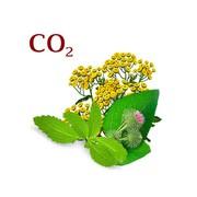Готовые комплексы СО2 экстрактов