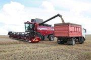 Перевозка зерновых грузов по Украине